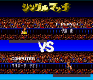 Super Fire Pro Wrestling Queen's Special